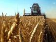 Что в этом году будет на продовольственном рынке в России