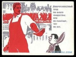 Каковы перспективы пролетарской социальной революции?