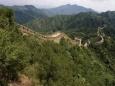 В Китае нашли лечебное вино 2000-летней давности