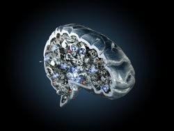 Как современная официальная наука исследует мозг