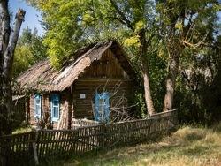 В Беларуси будут продавать пустующие дома на селе за одну базовую