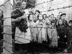Отступая из Белоруссии, гитлеровцы заражали местных жителей сыпным тифом