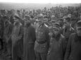 Почему пленные немцы массово гибли в Дании после войны