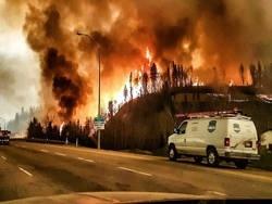 Климатический взрыв как глобальные изменения среды обитания