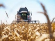 В. Катасонов: Россию ждет дефицит зерна и рост цен на хлеб