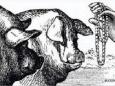 Как же измельчал «бисер», который мечет пред народом «власть»!