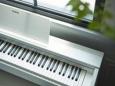 ТОП 10 цифровых пианино Casio