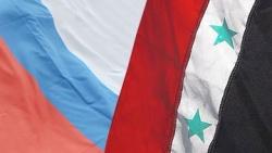 Россия препятствует попыткам покарать Сирию